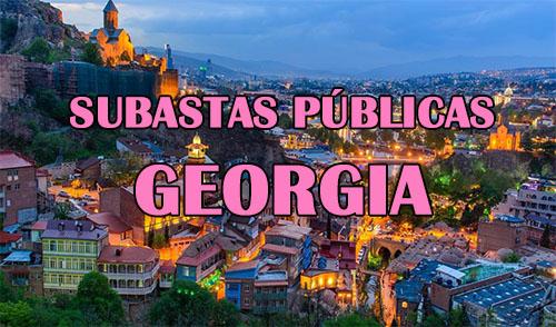 subastas en georgia