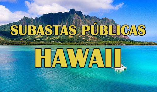 subastas en hawaii